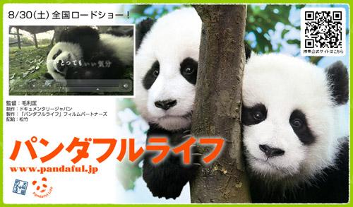 pandaful.jpg