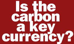 carbon08.jpg